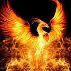 Orden des Phoenix